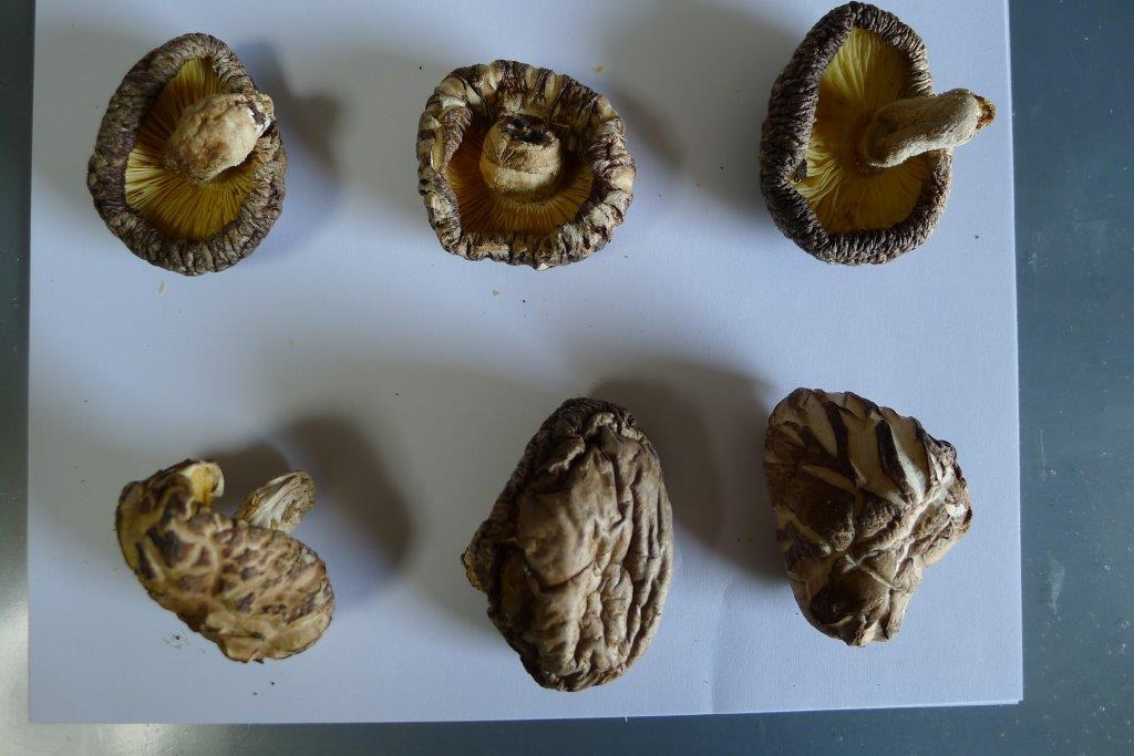 乾燥椎茸のアイキャッチ画像